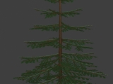 Christmas Tree created by borgking