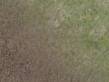 Blend grass/mud