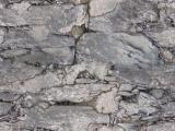 Steinwand / Stone wall